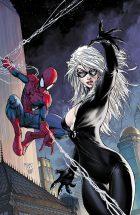 SpiderManCOLOR
